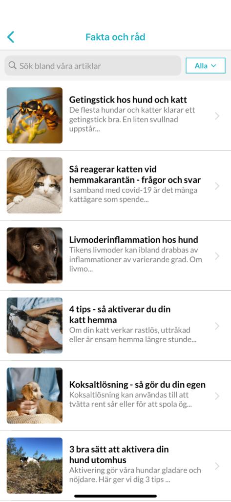 firstvet-05-app